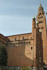 Cremona V005