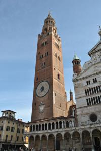 Cremona V014