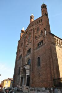 Cremona V029